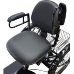 Triciclo Elétrico Idoso Deficiente Vega Motos Maringá Trs
